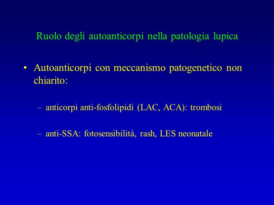 Ruolo degli autoanticorpi nella patologia lupica