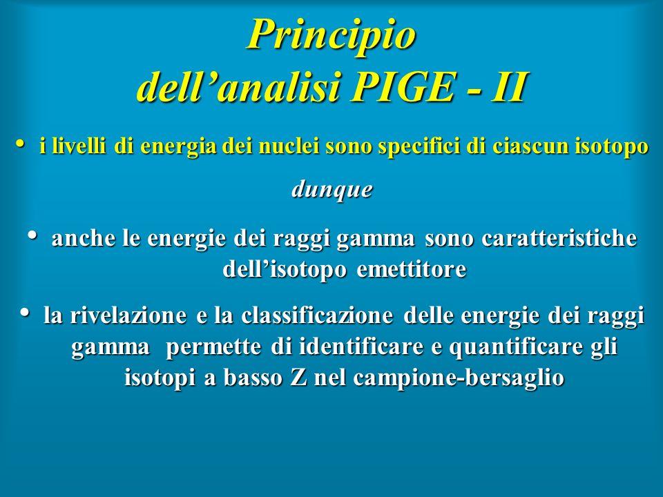 Principio dell'analisi PIGE - II