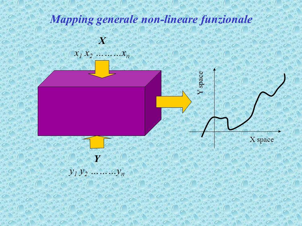 Mapping generale non-lineare funzionale
