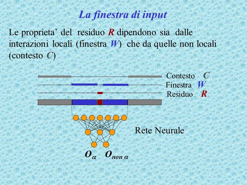 La finestra di inputLe proprieta' del residuo R dipendono sia dalle interazioni locali (finestra W) che da quelle non locali (contesto C)