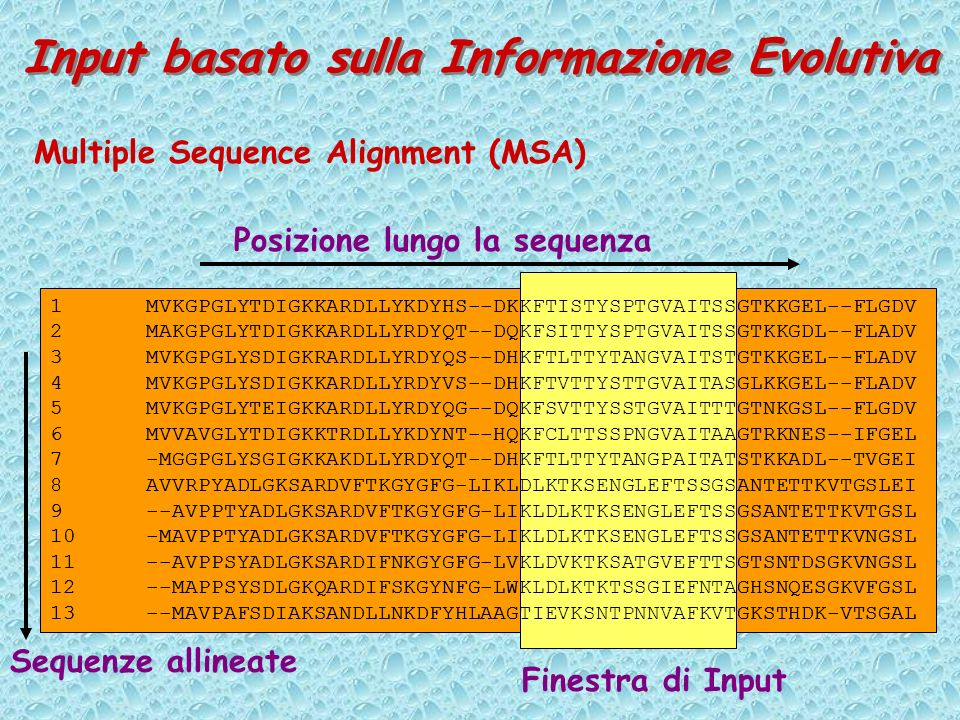 Input basato sulla Informazione Evolutiva