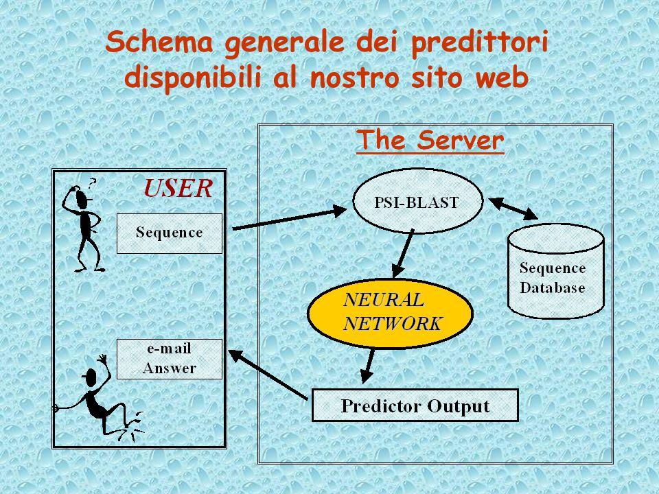 Schema generale dei predittori disponibili al nostro sito web