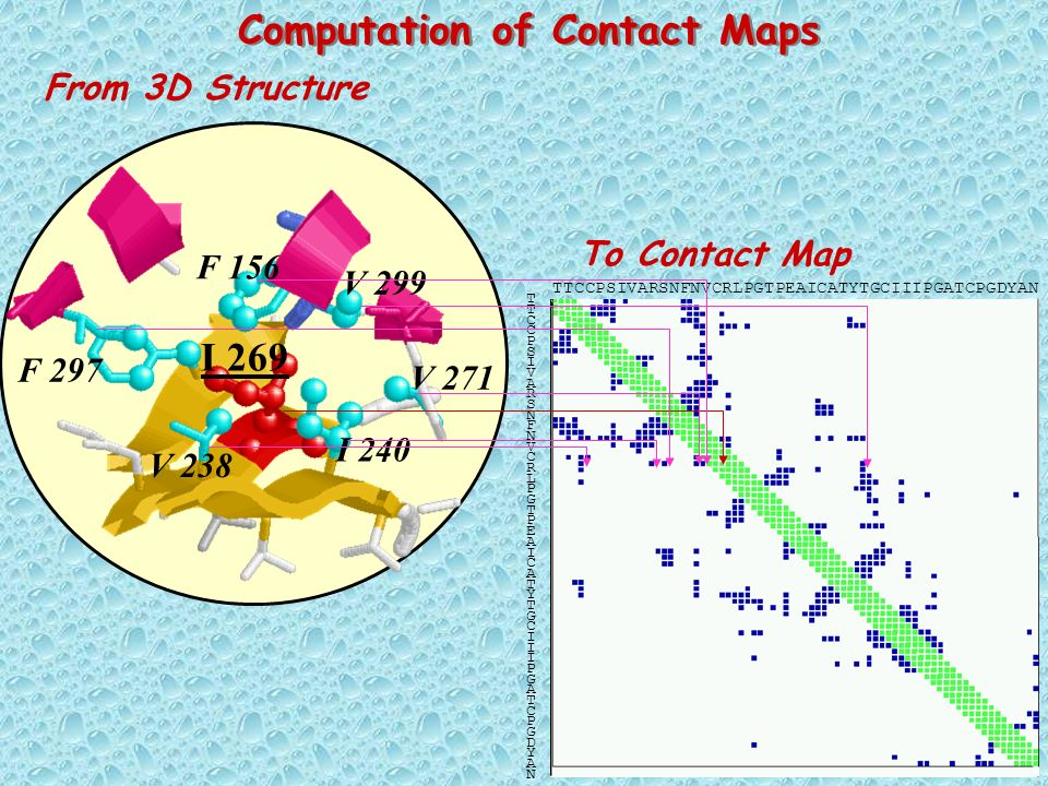 Computation of Contact Maps