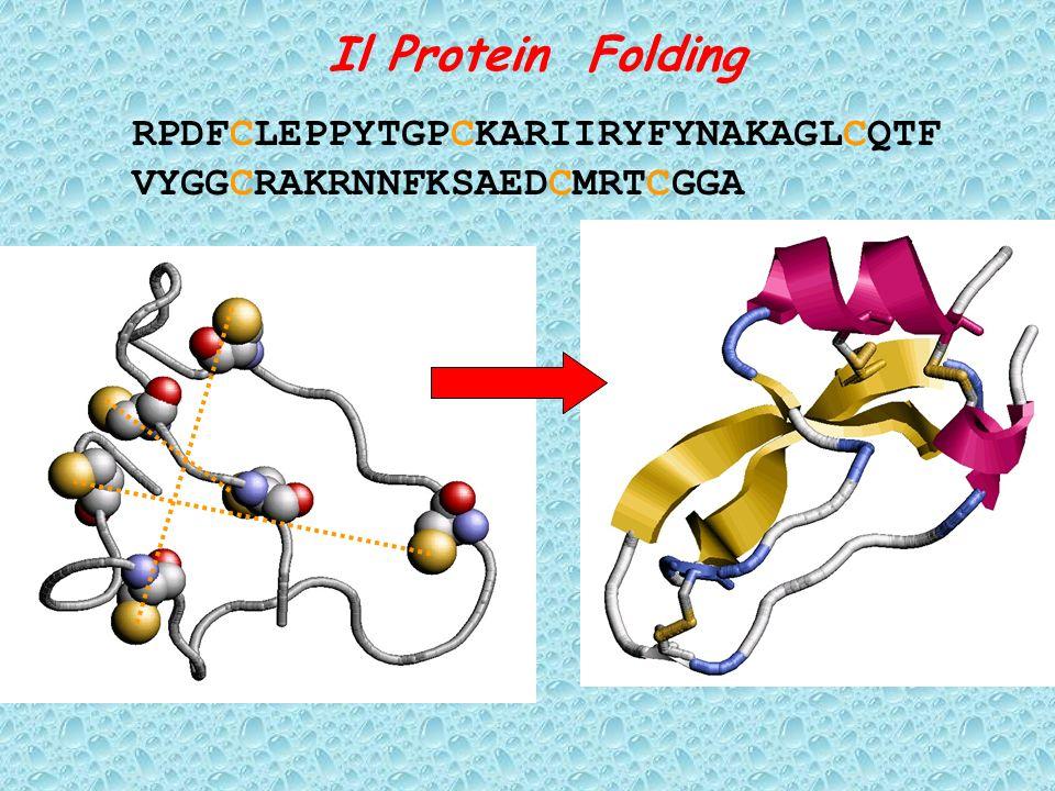 Il Protein Folding RPDFCLEPPYTGPCKARIIRYFYNAKAGLCQTF VYGGCRAKRNNFKSAEDCMRTCGGA