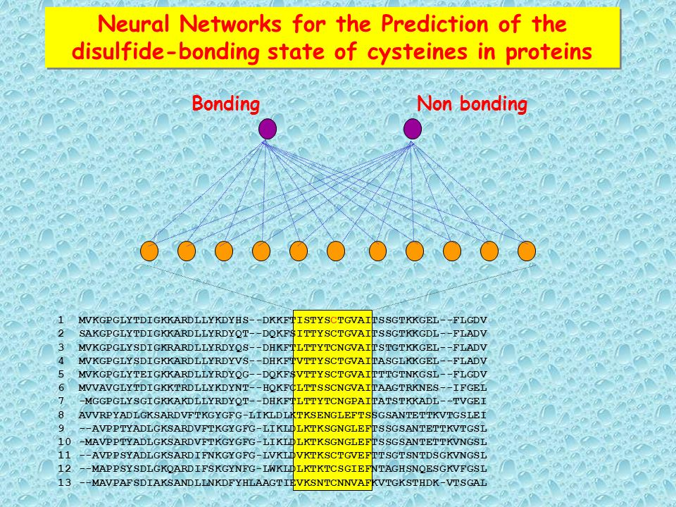 Neural Networks for the Prediction of the disulfide-bonding state of cysteines in proteins