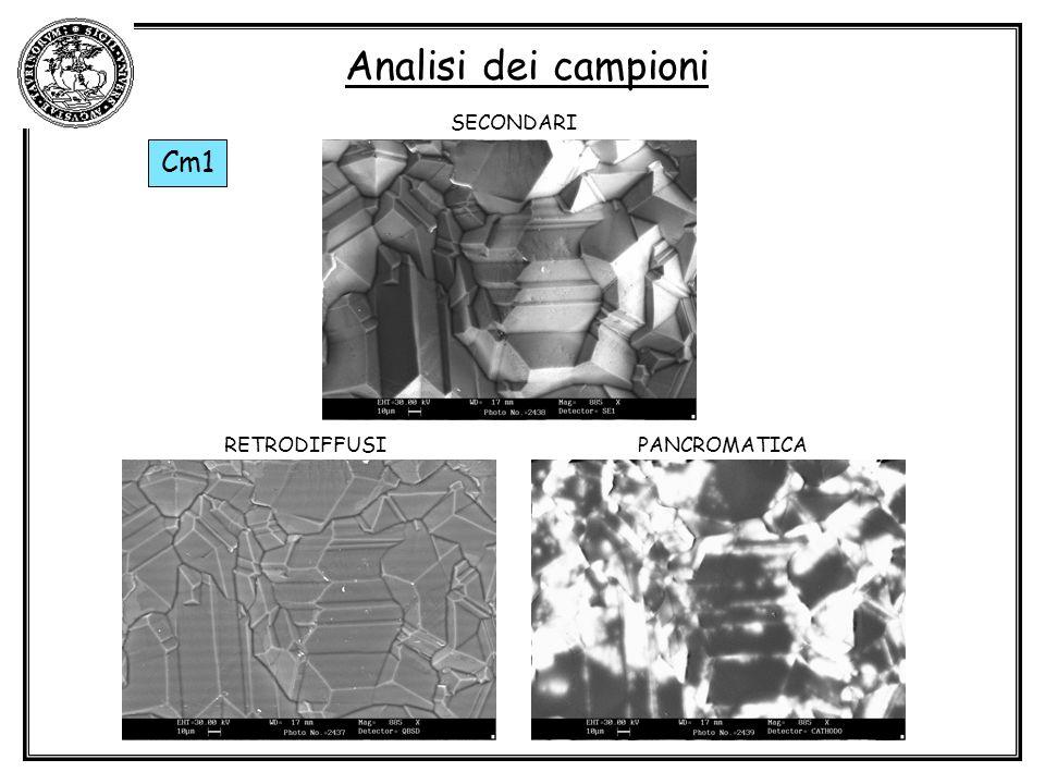 Analisi dei campioni SECONDARI Cm1 RETRODIFFUSI PANCROMATICA