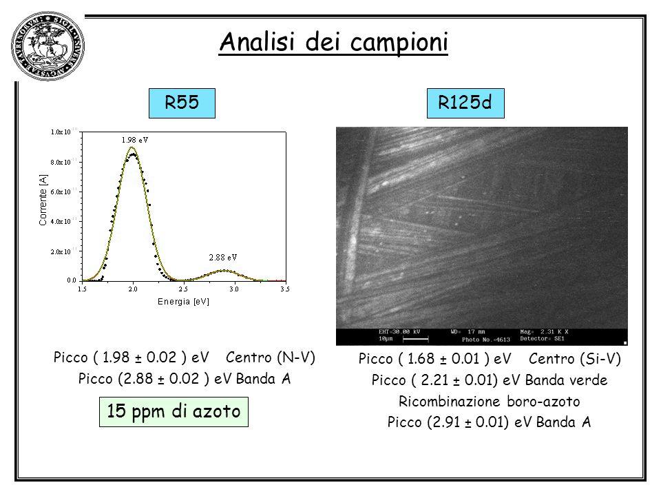 Analisi dei campioni R55 R125d 15 ppm di azoto