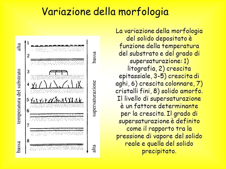 Variazione della morfologia
