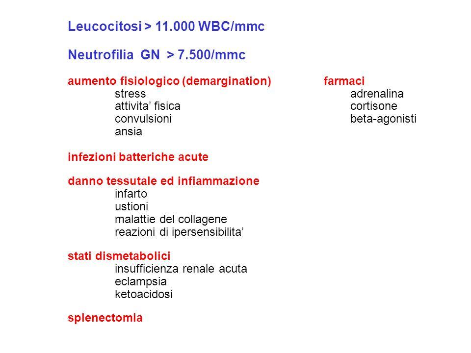 Leucocitosi > 11.000 WBC/mmc Neutrofilia GN > 7.500/mmc