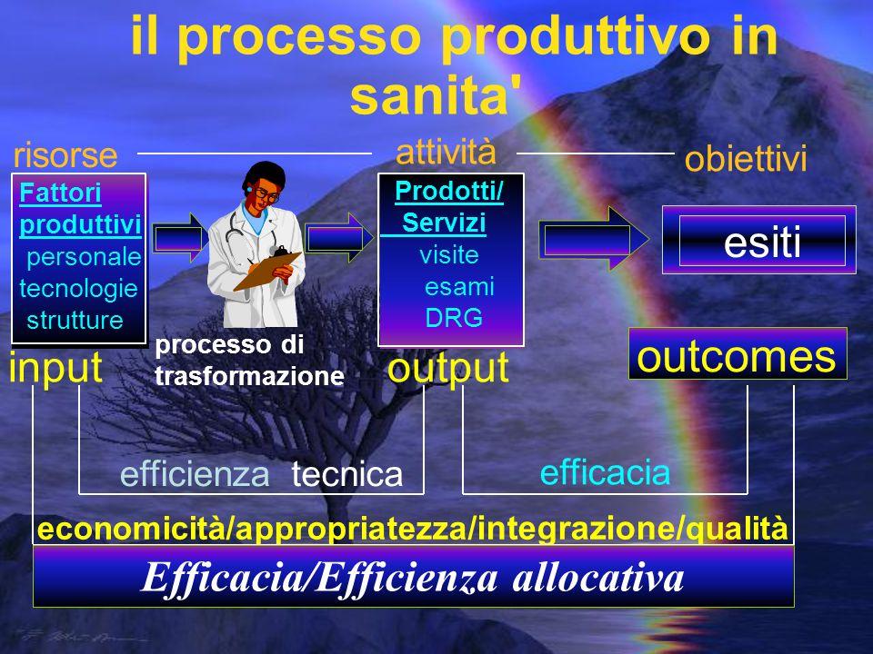 outcomes esiti il processo produttivo in sanita input output