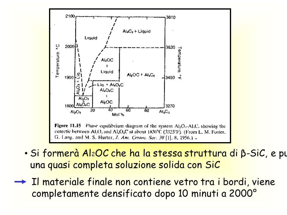 Si formerà Al2OC che ha la stessa struttura di β-SiC, e può dare