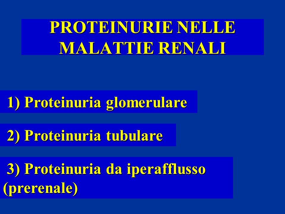 PROTEINURIE NELLE MALATTIE RENALI