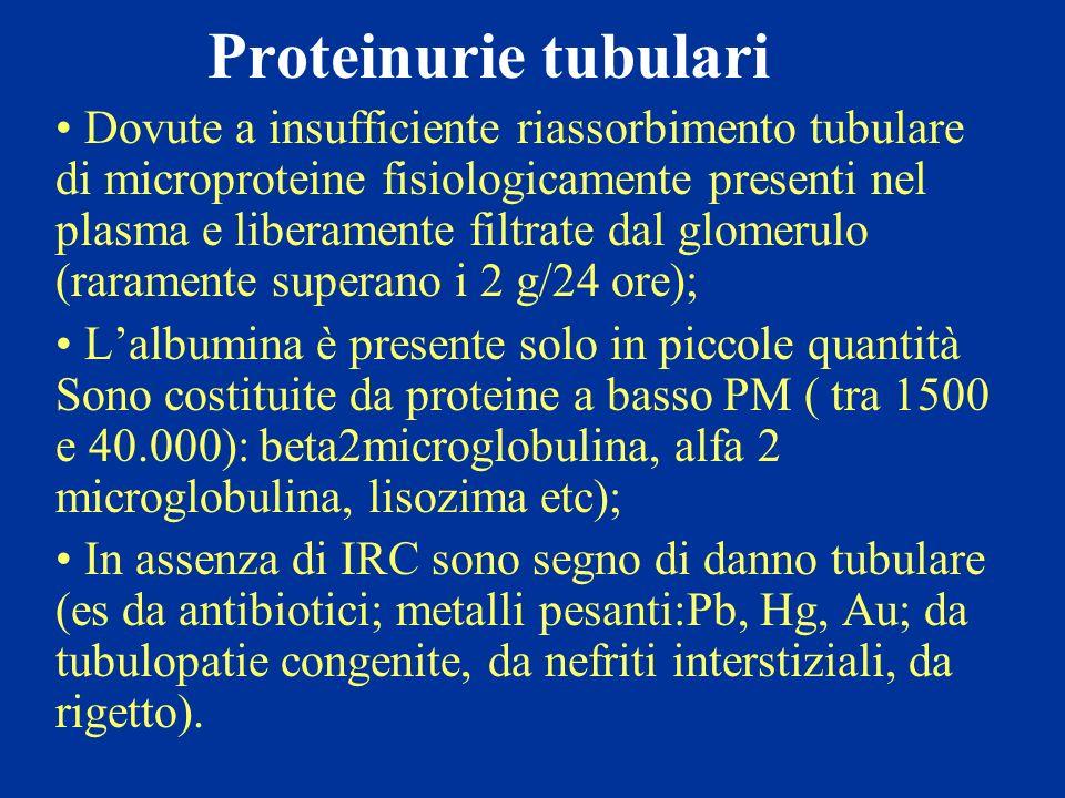 Proteinurie tubulari