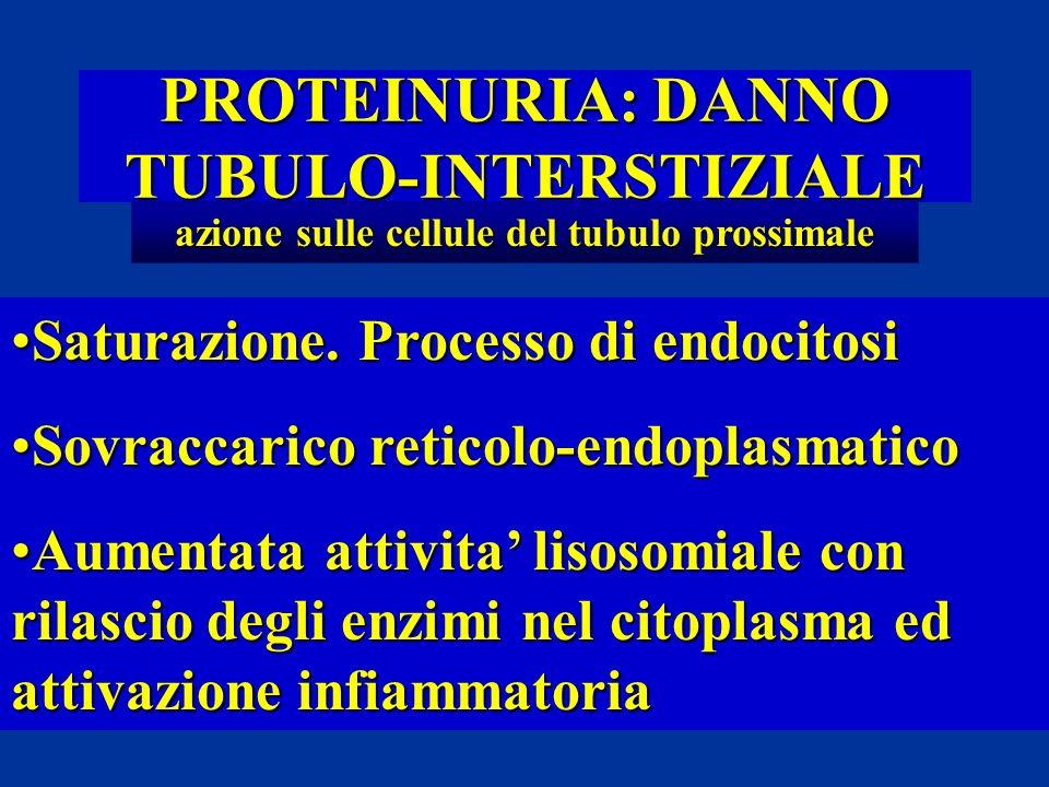 PROTEINURIA: DANNO TUBULO-INTERSTIZIALE