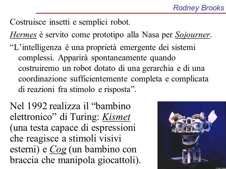 Rodney Brooks Costruisce insetti e semplici robot. Hermes è servito come prototipo alla Nasa per Sojourner.
