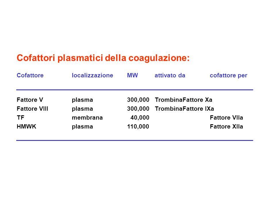 Cofattori plasmatici della coagulazione:
