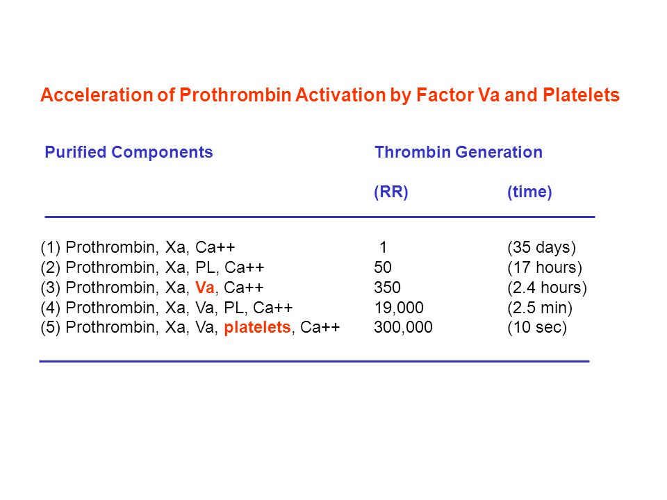 Acceleration of Prothrombin Activation by Factor Va and Platelets