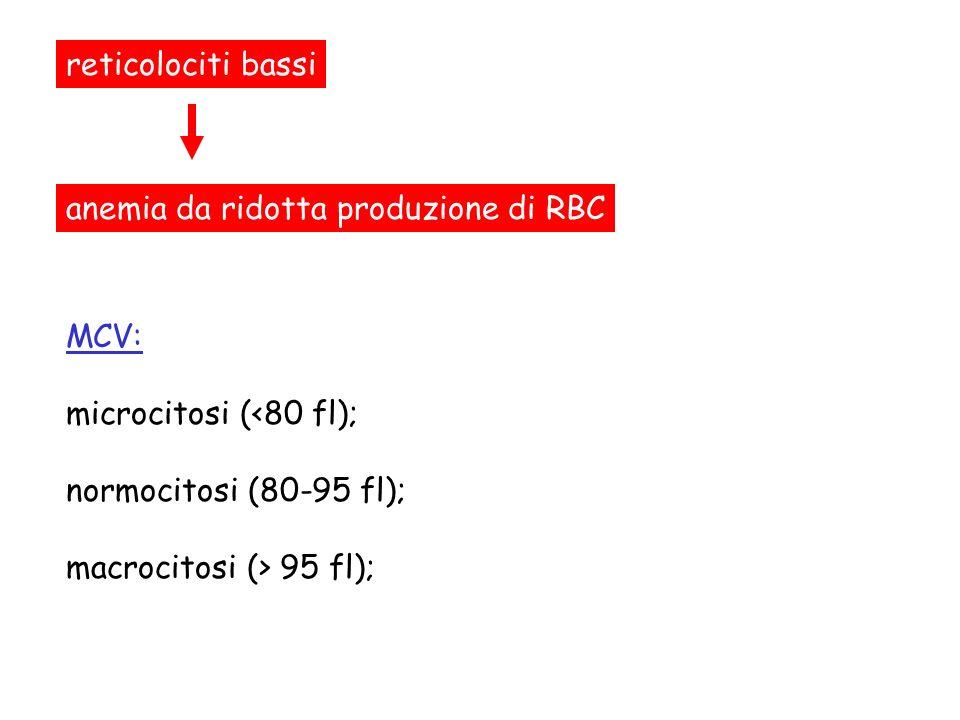 reticolociti bassi anemia da ridotta produzione di RBC. MCV: microcitosi (<80 fl); normocitosi (80-95 fl);