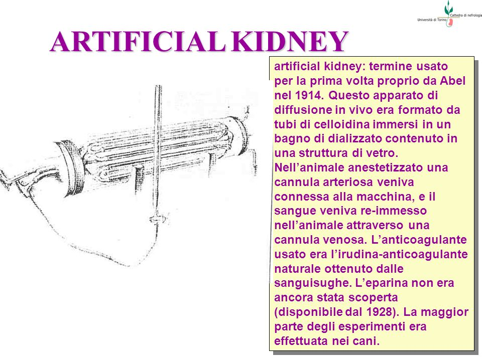 ARTIFICIAL KIDNEY