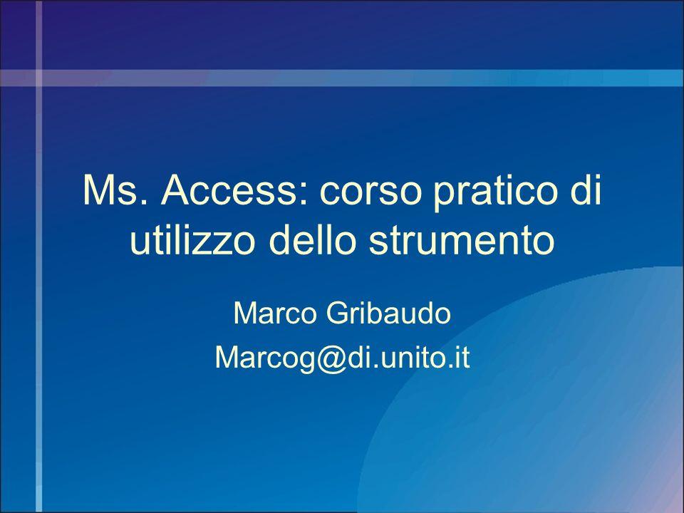 Ms. Access: corso pratico di utilizzo dello strumento