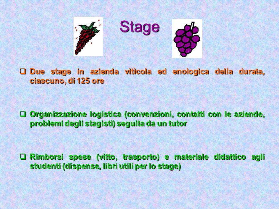 Stage Due stage in azienda viticola ed enologica della durata, ciascuno, di 125 ore.