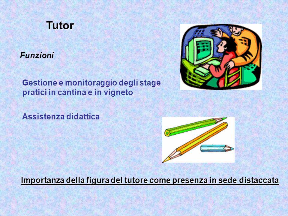 Tutor Funzioni. Gestione e monitoraggio degli stage pratici in cantina e in vigneto. Assistenza didattica.