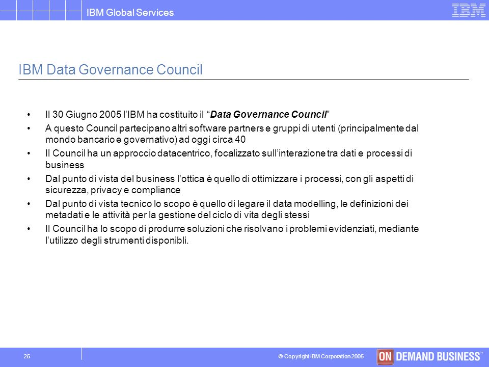 IBM Data Governance Council