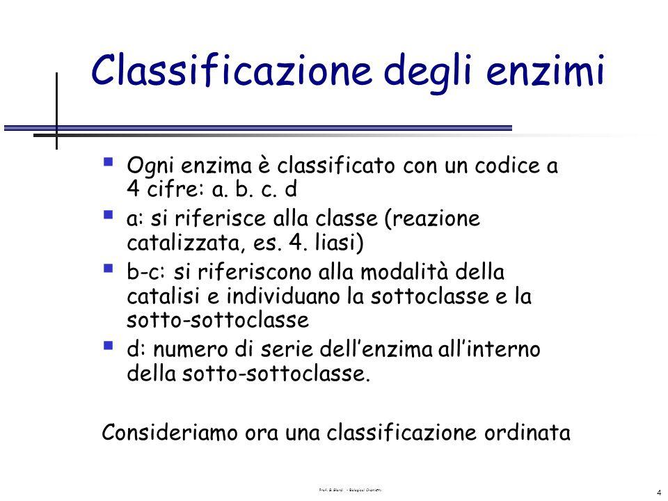 Classificazione degli enzimi