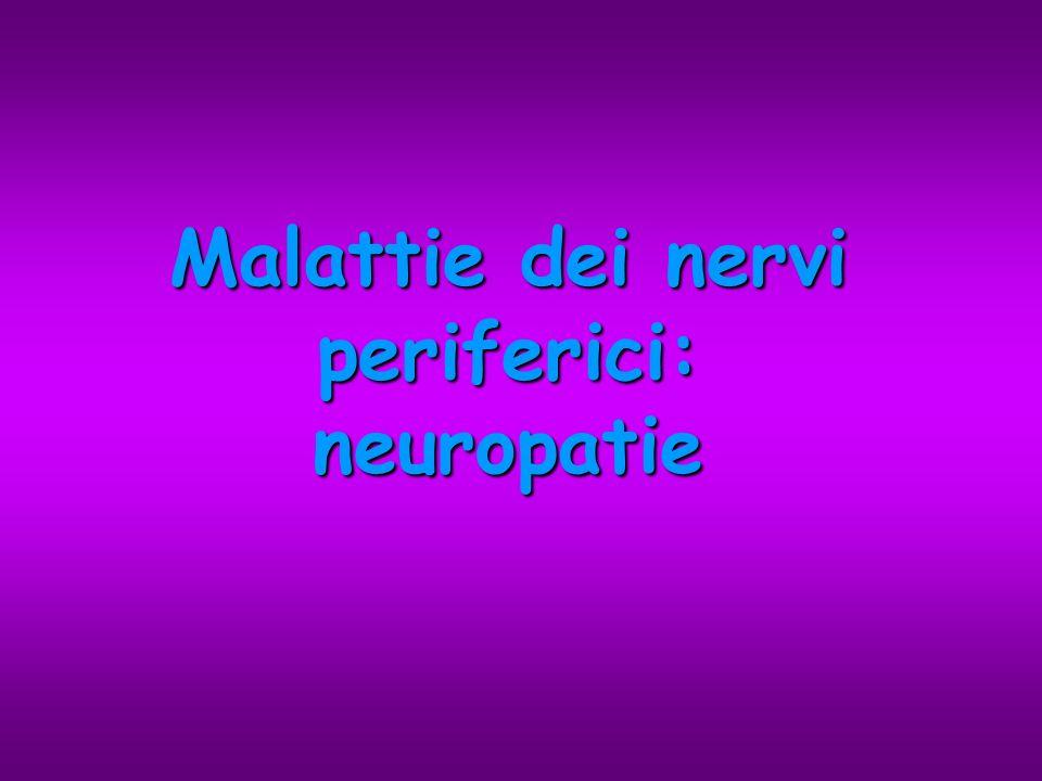 Malattie dei nervi periferici: neuropatie