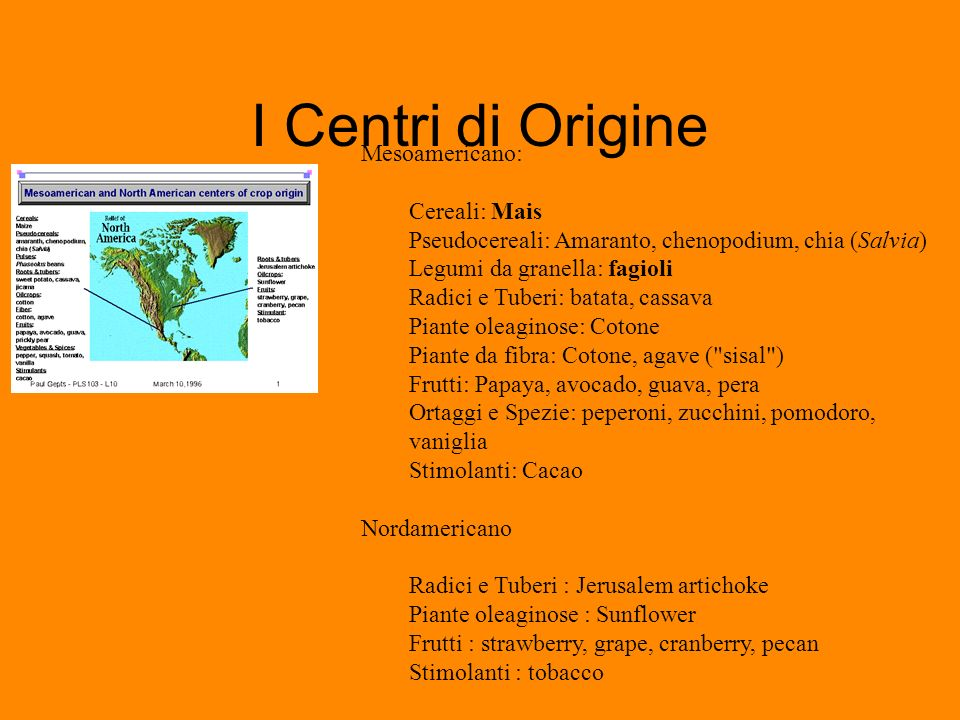 I Centri di Origine Mesoamericano: Cereali: Mais