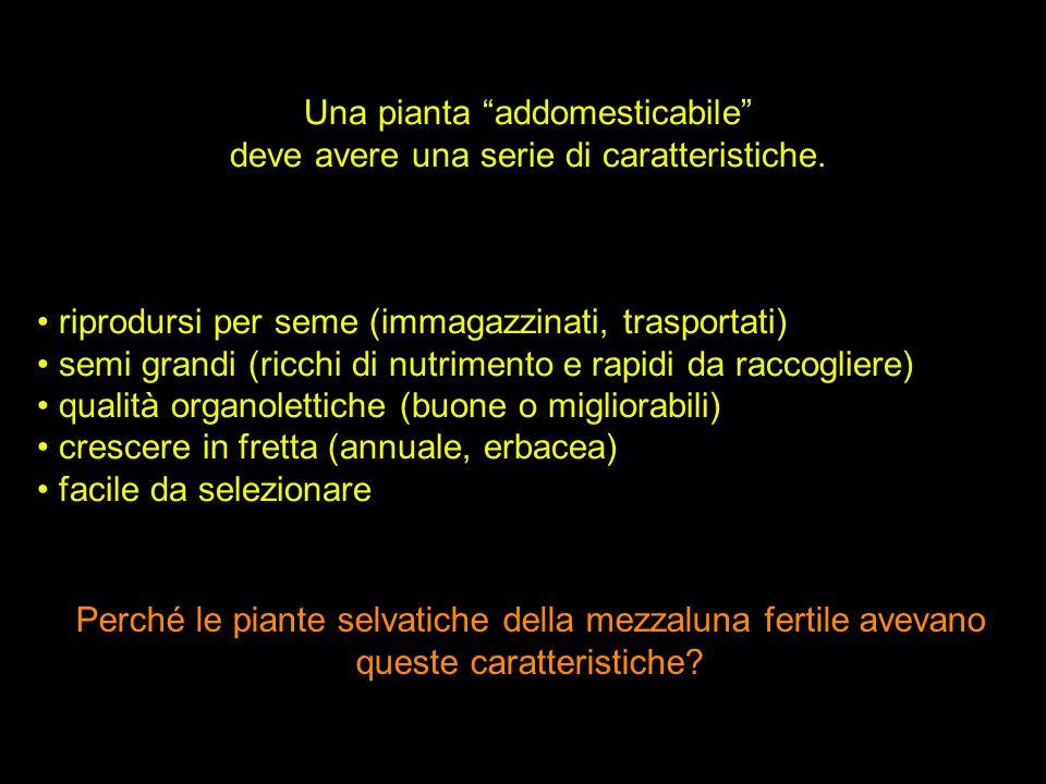 Una pianta addomesticabile deve avere una serie di caratteristiche.