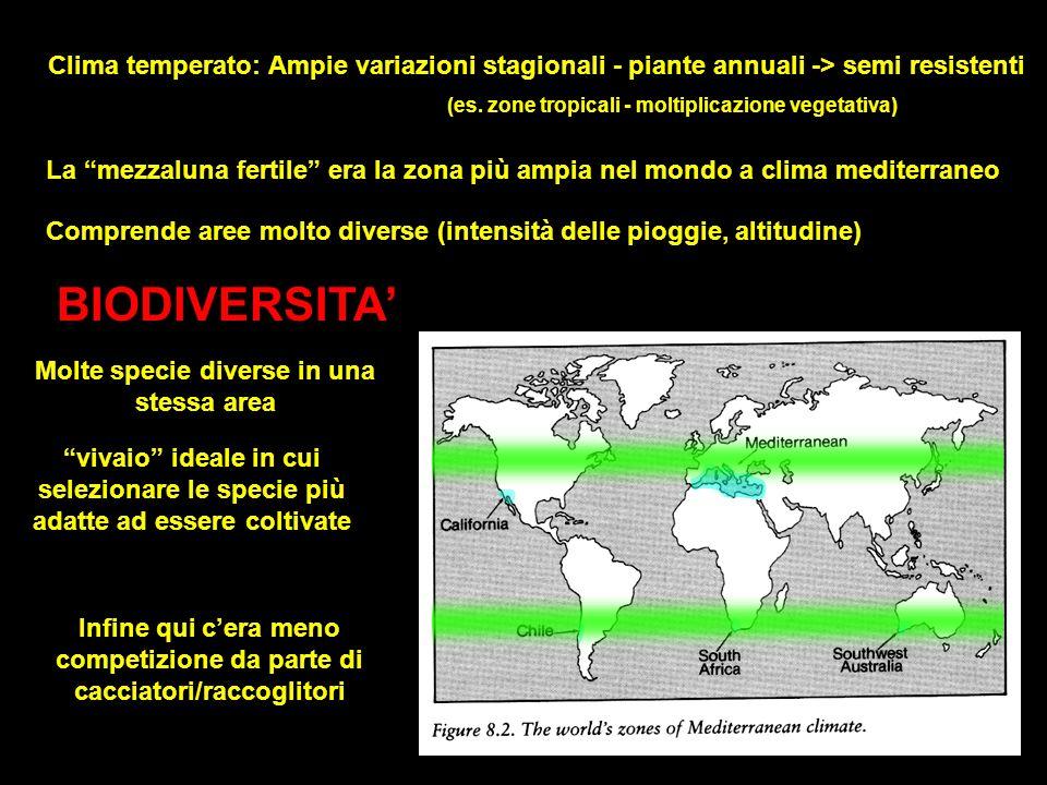 Clima temperato: Ampie variazioni stagionali - piante annuali -> semi resistenti