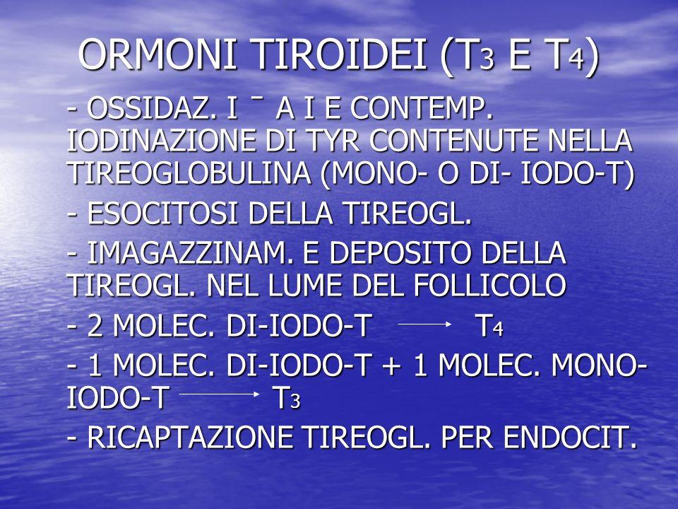 ORMONI TIROIDEI (T3 E T4)- OSSIDAZ. I ̄ A I E CONTEMP. IODINAZIONE DI TYR CONTENUTE NELLA TIREOGLOBULINA (MONO- O DI- IODO-T)