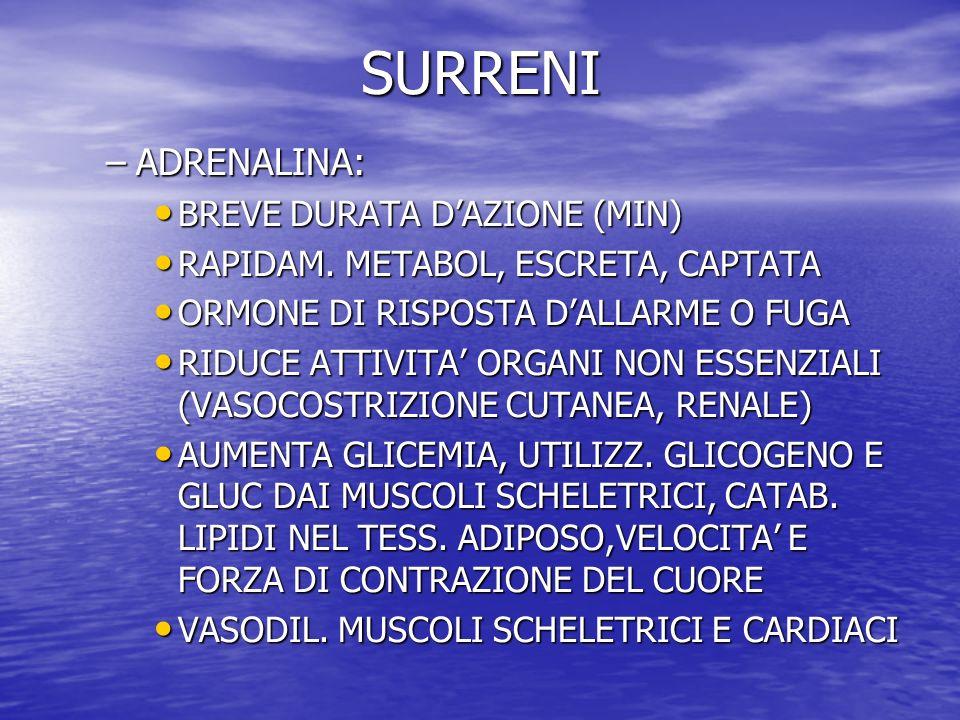 SURRENI ADRENALINA: BREVE DURATA D'AZIONE (MIN)