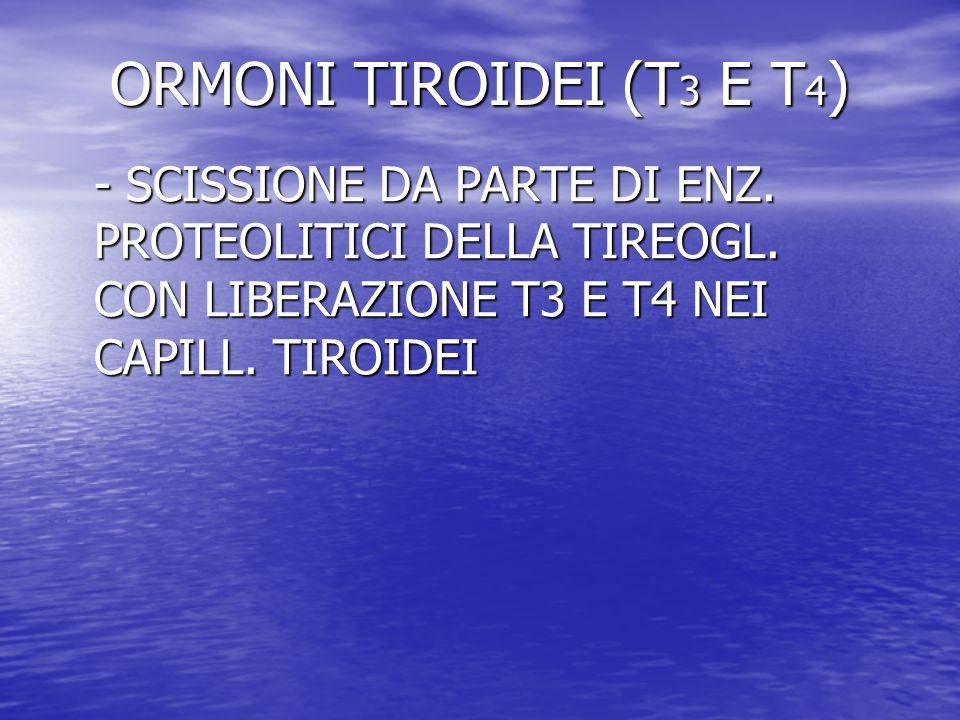 ORMONI TIROIDEI (T3 E T4)- SCISSIONE DA PARTE DI ENZ.