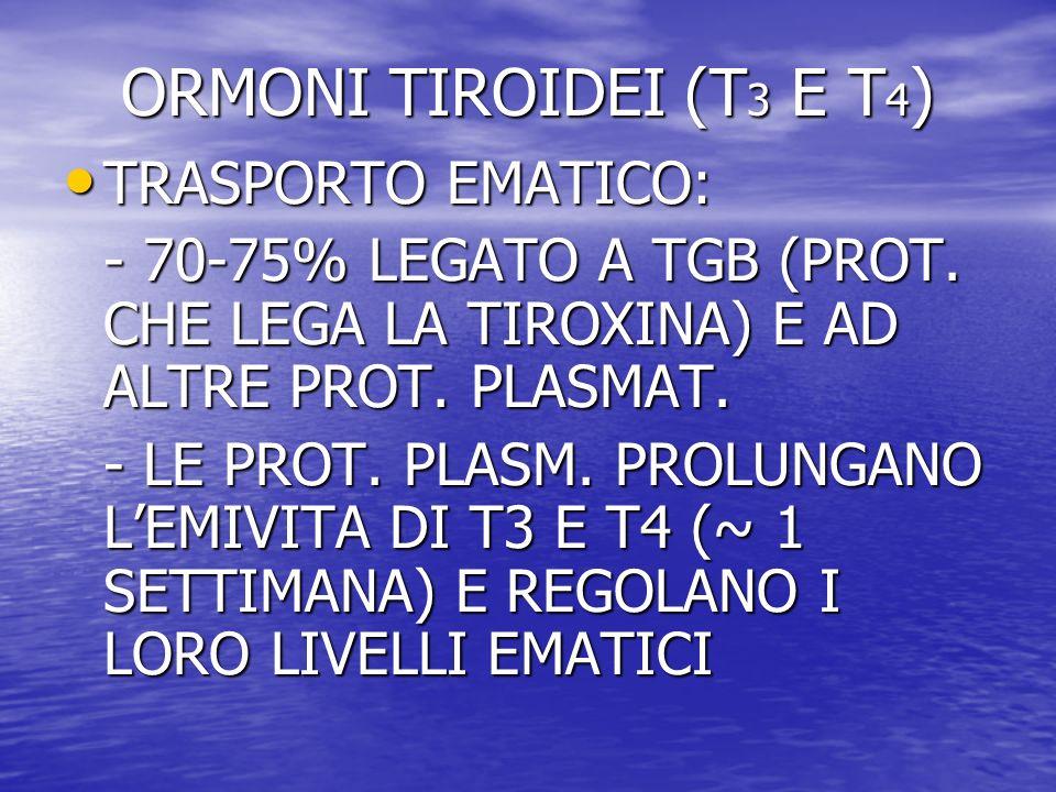 ORMONI TIROIDEI (T3 E T4) TRASPORTO EMATICO: