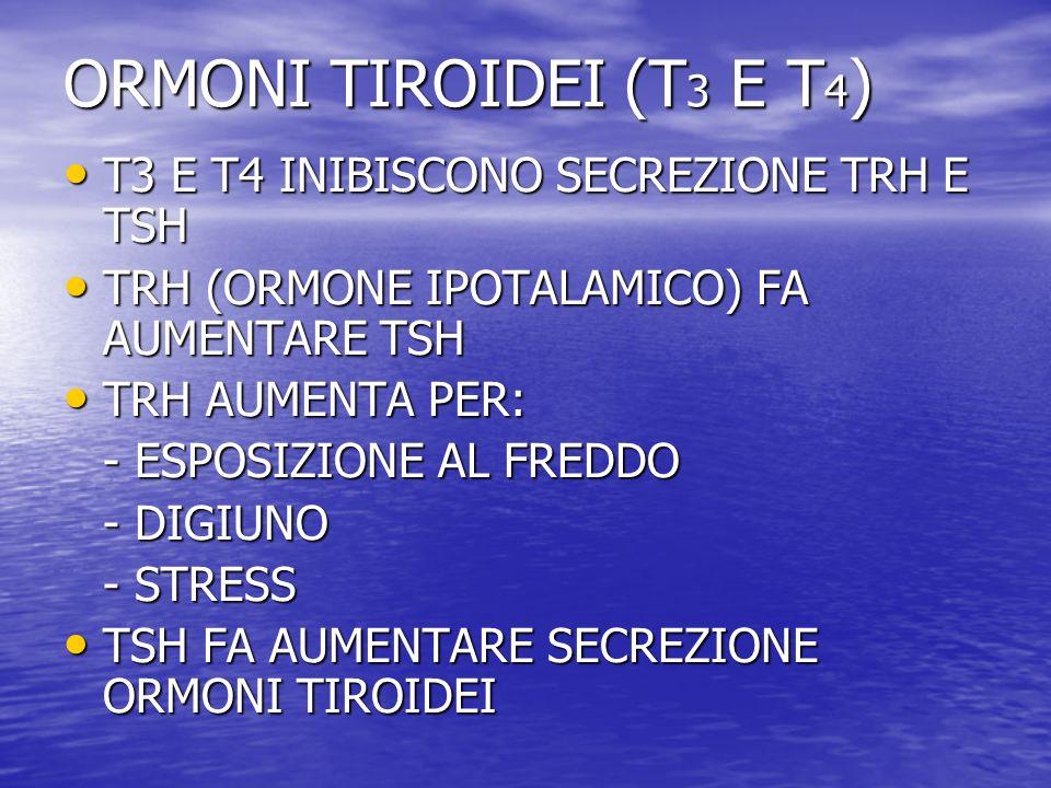 ORMONI TIROIDEI (T3 E T4) T3 E T4 INIBISCONO SECREZIONE TRH E TSH
