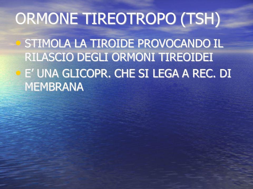 ORMONE TIREOTROPO (TSH)
