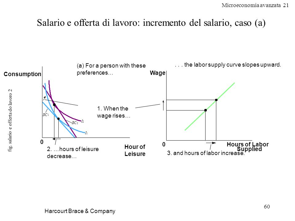 fig. salario e offerta do lavoro 2