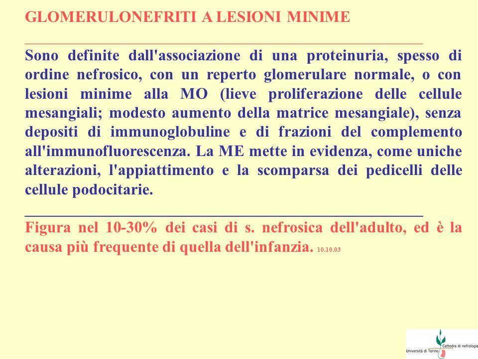 GLOMERULONEFRITI A LESIONI MINIME