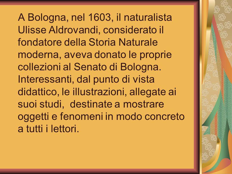 A Bologna, nel 1603, il naturalista Ulisse Aldrovandi, considerato il fondatore della Storia Naturale moderna, aveva donato le proprie collezioni al Senato di Bologna.