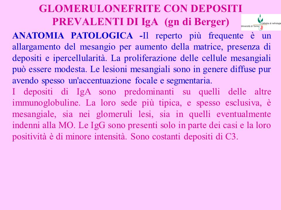 GLOMERULONEFRITE CON DEPOSITI PREVALENTI DI IgA (gn di Berger)