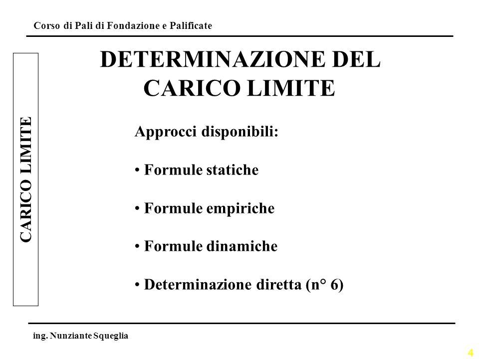 DETERMINAZIONE DEL CARICO LIMITE