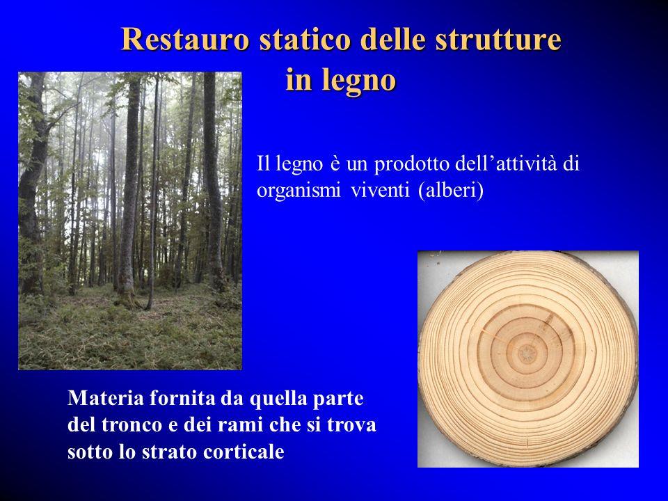 Restauro statico delle strutture in legno