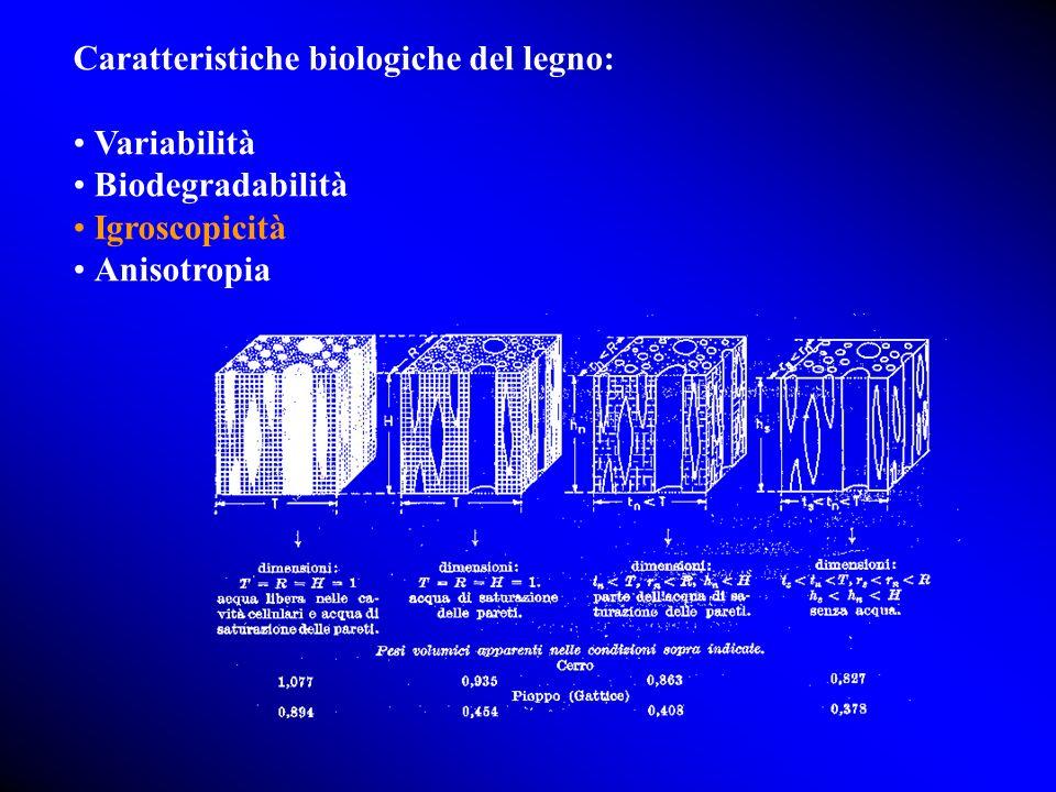 Caratteristiche biologiche del legno: