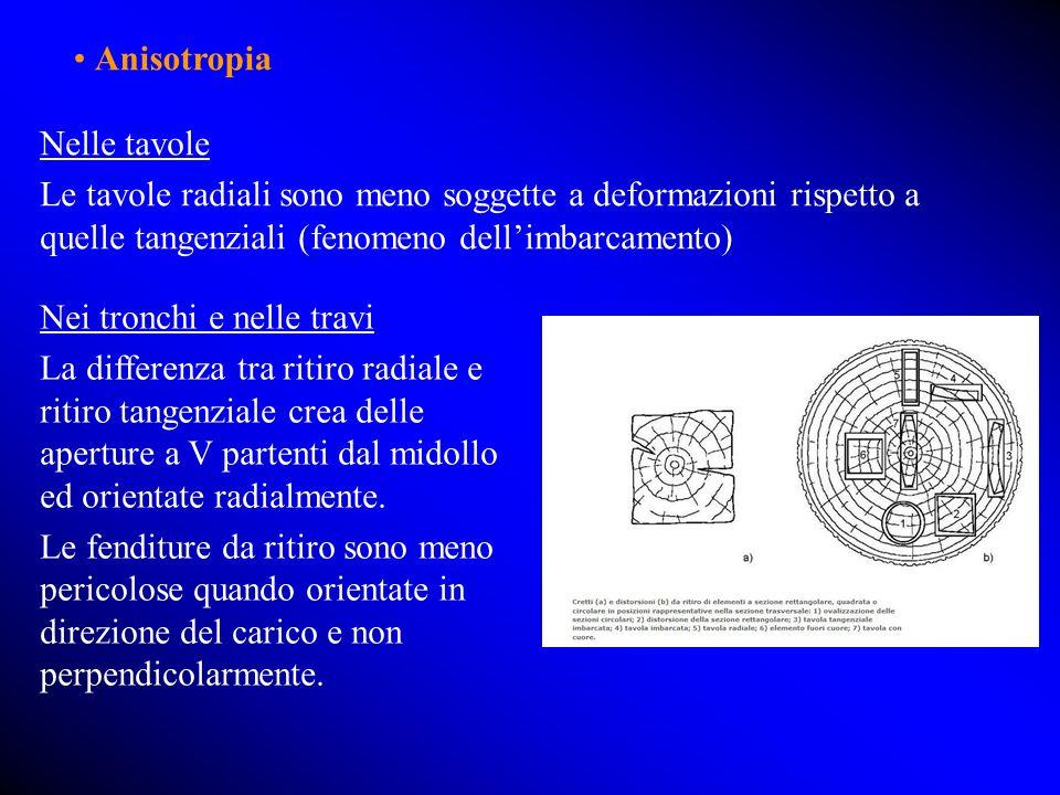 • Anisotropia Nelle tavole. Le tavole radiali sono meno soggette a deformazioni rispetto a quelle tangenziali (fenomeno dell'imbarcamento)