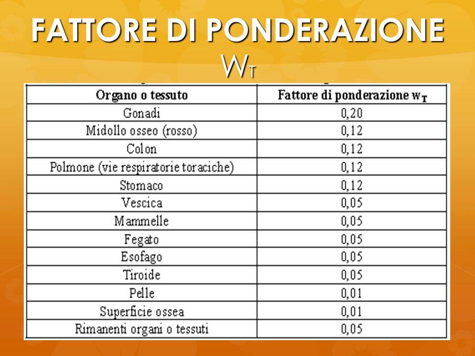 FATTORE DI PONDERAZIONE WT