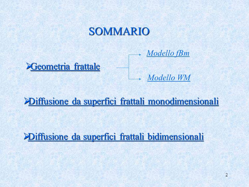 SOMMARIO Geometria frattale
