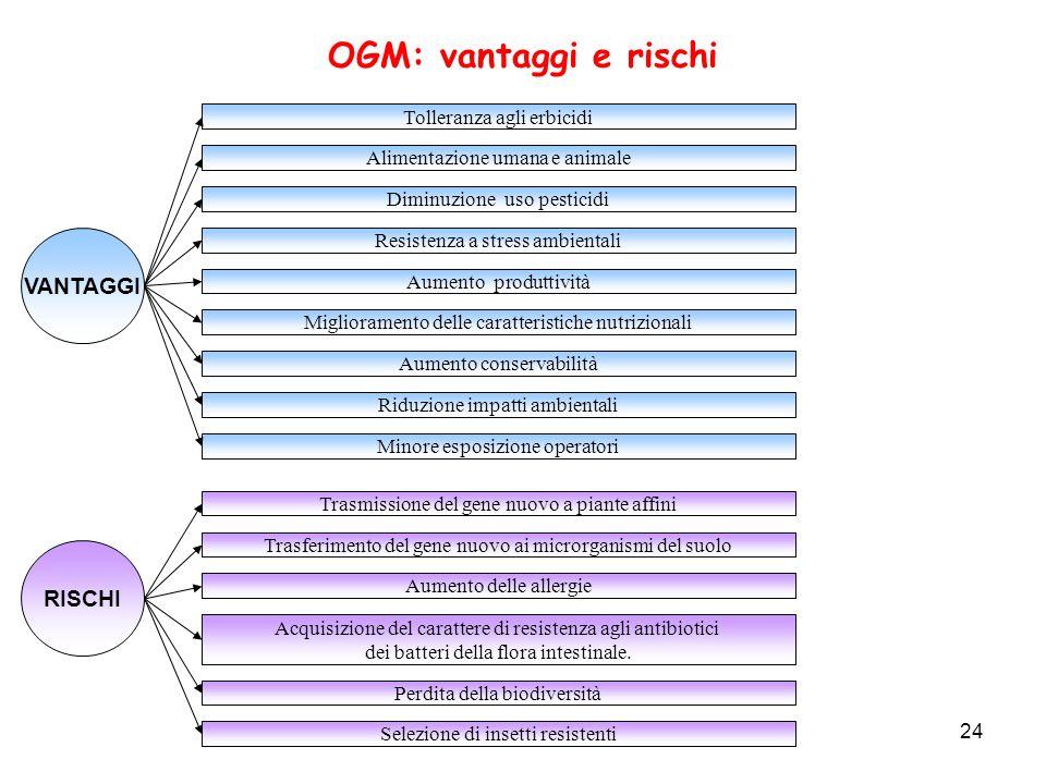 OGM: vantaggi e rischi VANTAGGI RISCHI Tolleranza agli erbicidi
