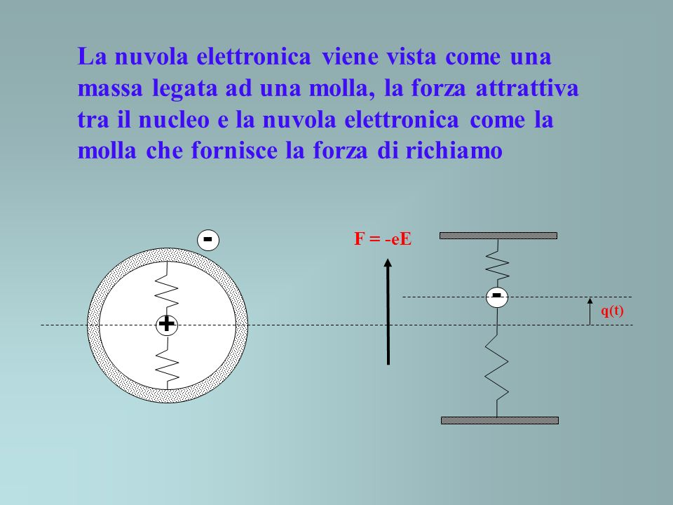 La nuvola elettronica viene vista come una massa legata ad una molla, la forza attrattiva tra il nucleo e la nuvola elettronica come la molla che fornisce la forza di richiamo